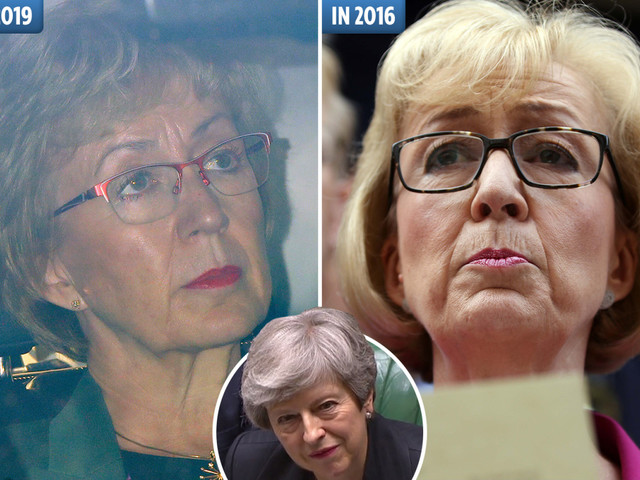 Andrea Leadsom's stinging resignation to Theresa May was revenge for defeat in 2016 leadership battle
