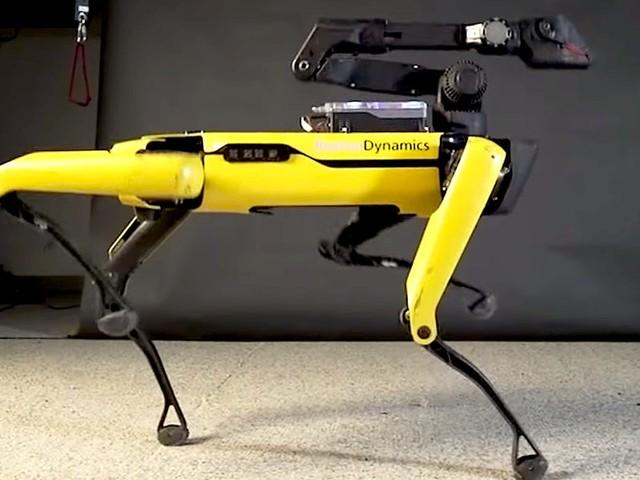 'Mythbusters' host Adam Savage built a rickshaw pulled by a Boston Dynamics robot