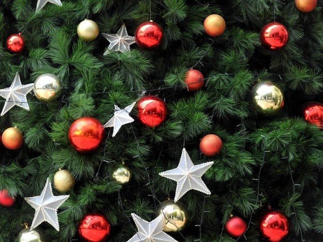 When Should I Put My Christmas Tree Up Part - 21: When Should I Put My Christmas Tree Up In Ireland?