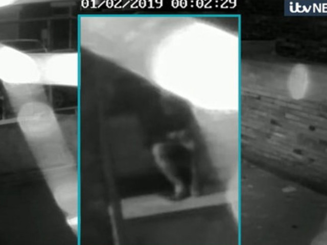 Libby Squire: CCTV Emerges Of Car Minutes After Last Sighting Of Missing Hull Student