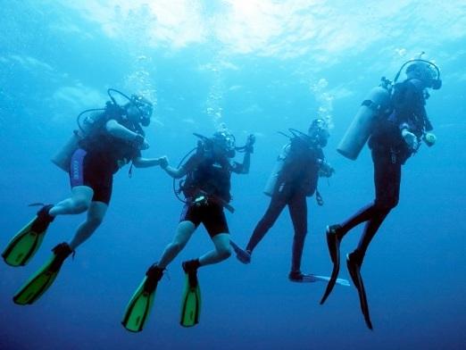 Top 5 Scuba Diving Spots in New Zealand