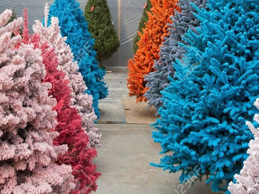 13 unique Christmas trees that you probably haven't seen before — from candy cane stripes to palm trees