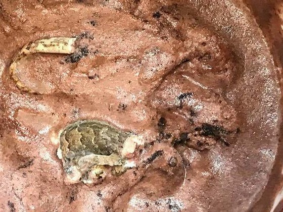 This Is Definitely Not What You Want To Find When You Dig Into Chocolate Ice Cream