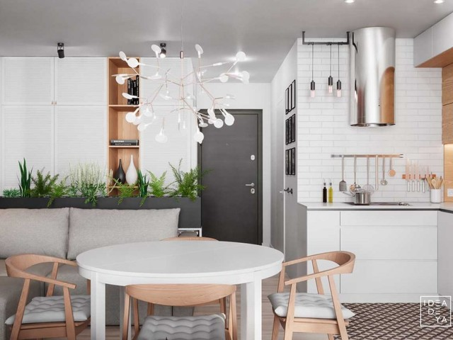 3 modern small apartment designs under 50 square meters that dont sacrifice on style includes floor plans