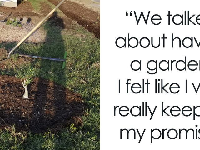 """Man Grows A Garden To Keep Promise For His Late Wife, Gets Heartwarming Help From A """"Plant Fairy"""""""