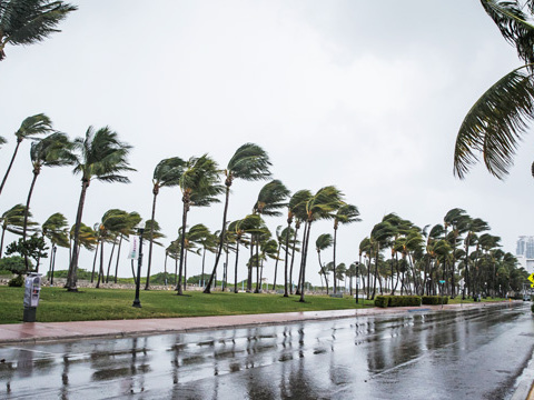 Hurricane Irma's Winds Are Thrashing Miami And 850,000+ Are Without Power In Florida