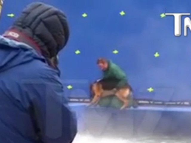 People are outraged by a video showing alleged animal abuse from the movie 'A Dog's Purpose'