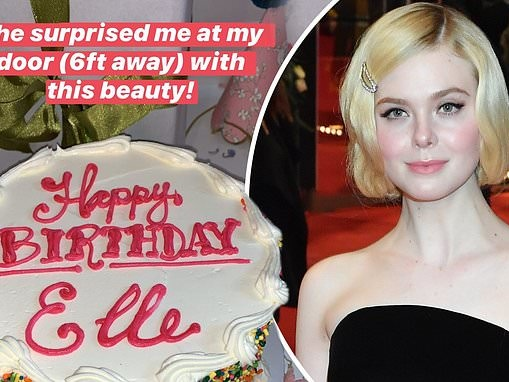 Elle Fanning celebrates turning 22 by sharing the elaborate birthday cakes she received on Instagram