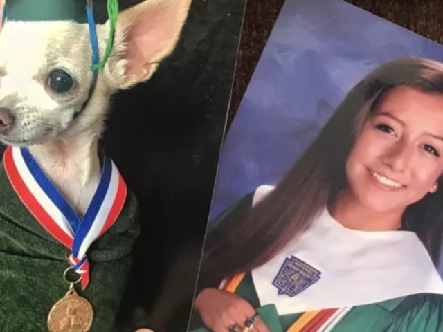 Woman Replaces Her Mom's Family Photos With Replicas Featuring Her Dog