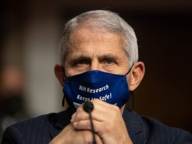 Fauci warns of uptick in COVID-19 cases from travel as over 5 million people pass through US airports in the past week