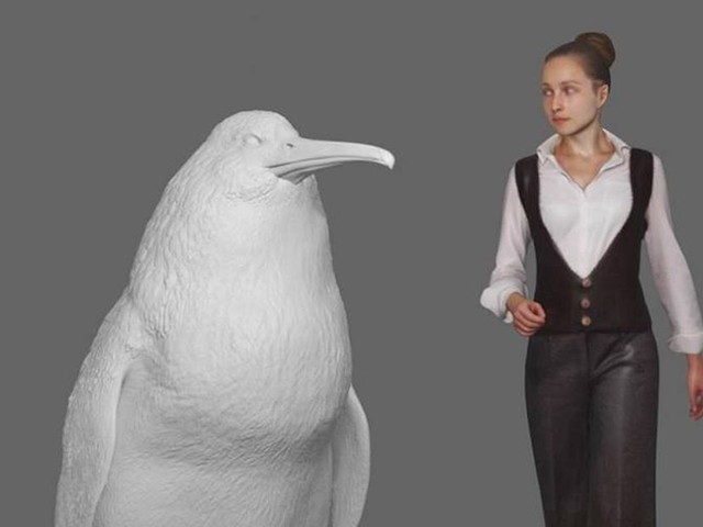 Remains of giant human-sized penguin that roamed earth 60 million years ago found