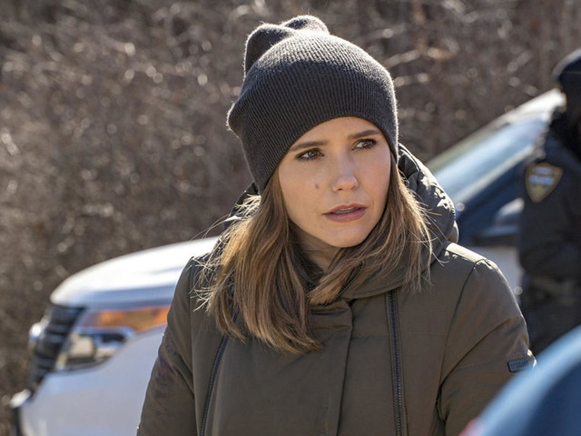 We Know Where Sophia Bush Is Headed Next