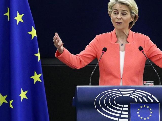 Von der Leyen's plan for the EU