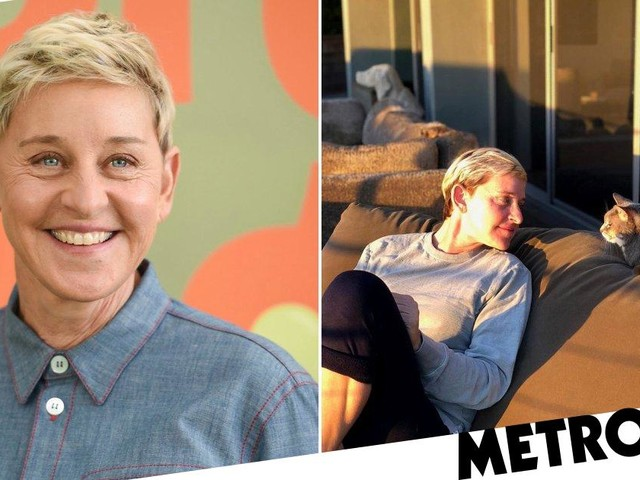 Ellen DeGeneres pays heartbreaking tribute as her adopted cat dies: 'We ended her suffering'