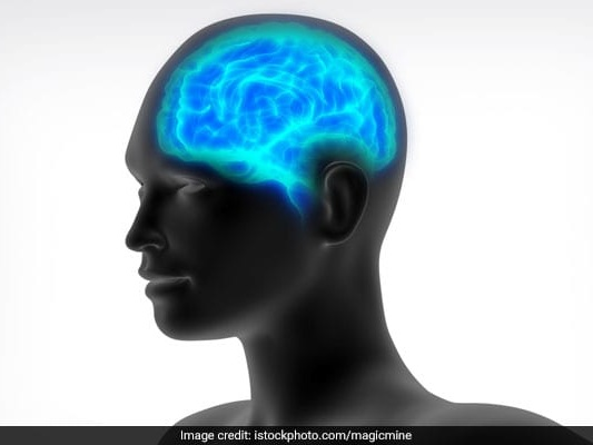 Brain Activity Responsible For Making Moral Decisions