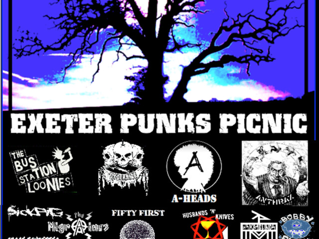 Exeter punk picnic announce 2017 bill