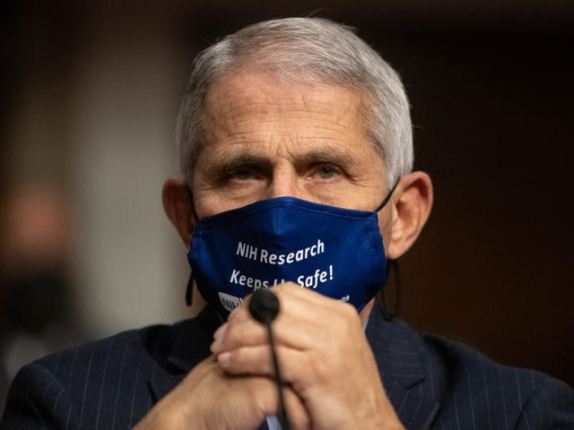 Fauci predicts the COVID-19 pandemic likely won't improve by Christmas or New Year's Day