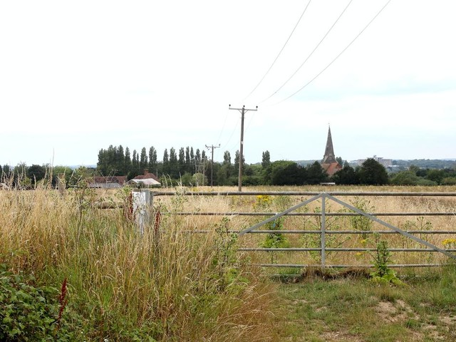 Government buys 27-acre site amid post-Brexit 'lorry park' fears