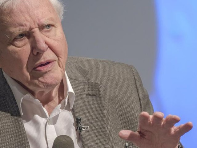 Why David Attenborough Should Stop Saying Climate Change Is a Crime Against the Planet