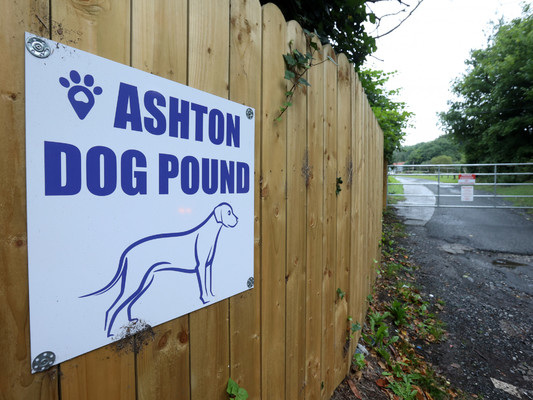 Man charged over animal welfare incident at Ashtown Dog Pound