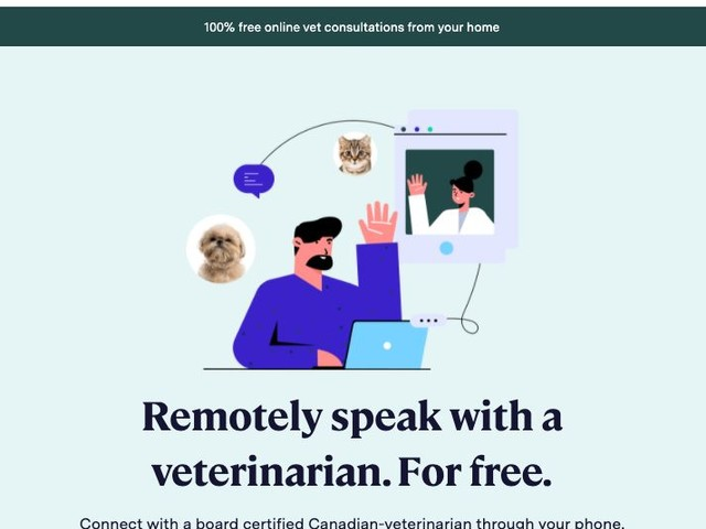 Virtual Vet Clinics - Kabo Health is a Free Clinic for Canadian Pet Owners (TrendHunter.com)