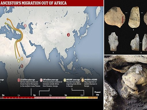 Human ancestors left Africa 2.1 million years ago journeying to Asia