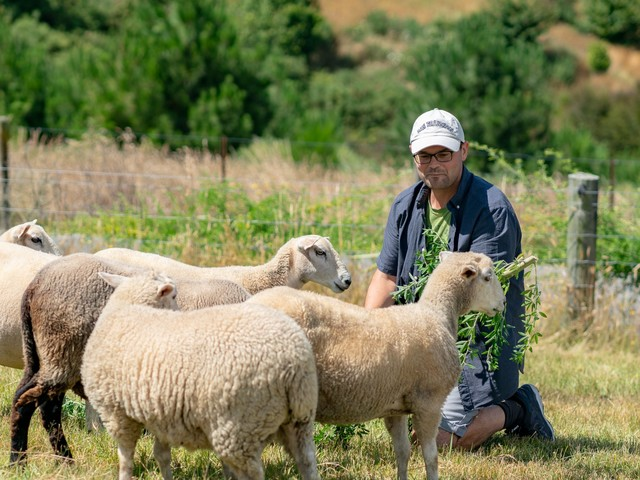 This is what a workday looks like for a CEO who runs his entire 40-employee tech company from a farm in New Zealand