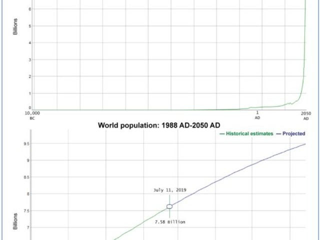 US Census Bureau: annual world population growth slowing, projected to soon slip below 1% for first time since 1950