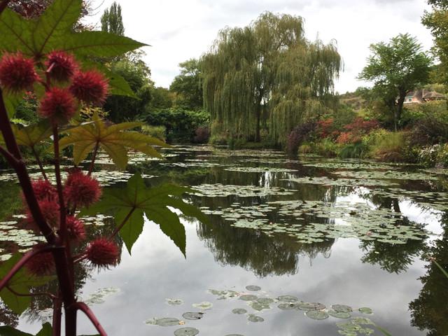 A Day in Monet's Gardens