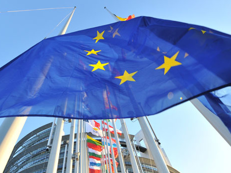 What is the European Parliament and what does it do?