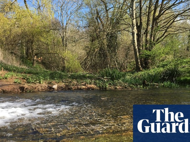 Lost river returns to Somerset 70 years after it dried up