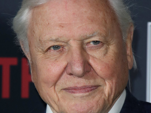 'Our Planet': Netflix Poaches Sir David Attenborough For New Nature Documentary
