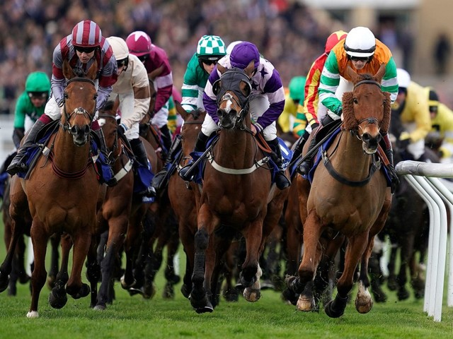 Who won Albert Bartlett Novices' Hurdle 2019? How every horse finished in 2.50 at Cheltenham Festival