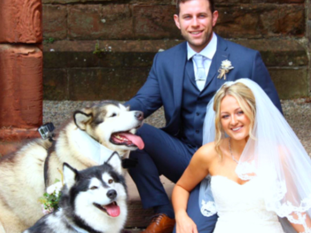 This Couple Chose Their Dogs As Maid Of Honour And Best Man