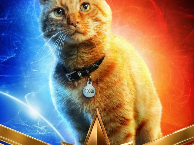 Captain Marvel new character posters are feline good