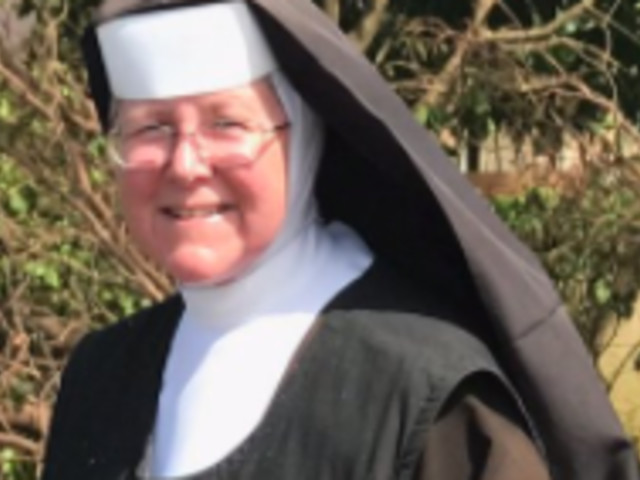 Hurricane Irma: Chainsaw Toting Nun Chops Up Fallen Trees