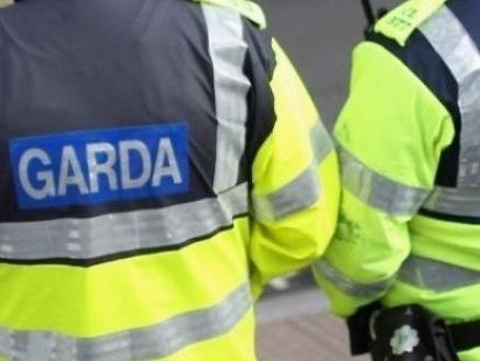 Man (75) dies after being hit by van in Co Cork