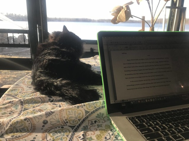 Guest Post: The Meowditor-In-Chief