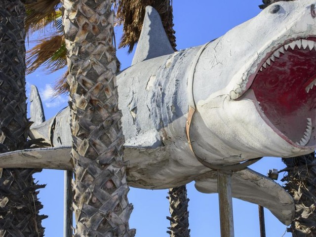 'Jaws' shark installed in the new long-awaited Oscars museum