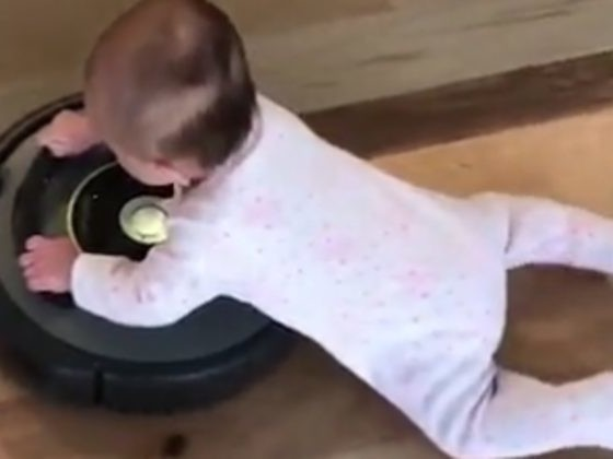 If It Was Really This Easy To Vacuum The House, We Wouldn't Hate Doing It So Much
