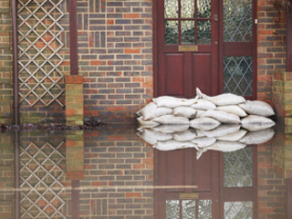 'Vital to protect our future': Government touts £5m climate resilience research programme