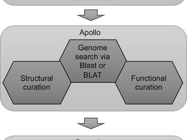 A universal framework combining genome annotation and undergraduate education