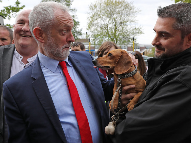 Jeremy Corbyn Would Help Poorer Families Pay Vet Bills And Give Tenants The Right To Keep A Pet
