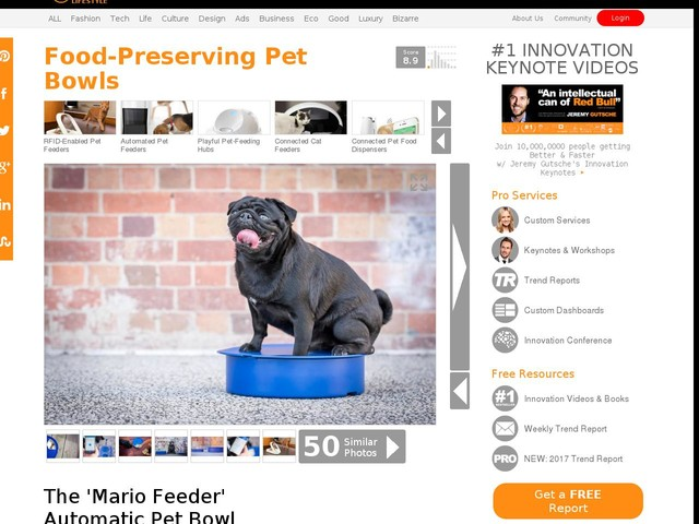 Food-Preserving Pet Bowls - The 'Mario Feeder' Automatic Pet Bowl Provides Peace of Mind for Owners (TrendHunter.com)