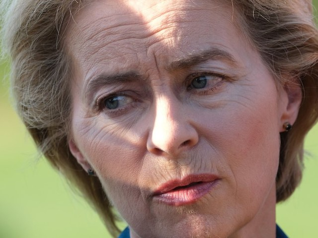 These are the 6 biggest challenges Ursula Von der Leyen will face once she's head of the EU