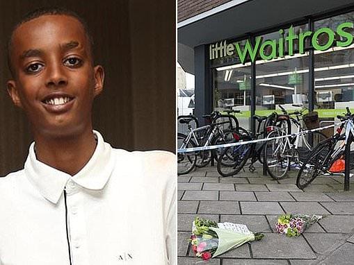Schoolboy, 16, 'fled on a Boris Bike after stabbing 17-year-old boy to death'
