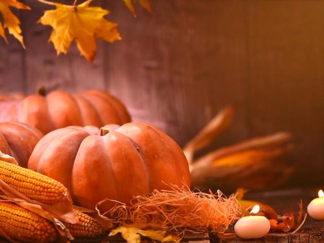 Houston organizations looking for Thanksgiving volunteers