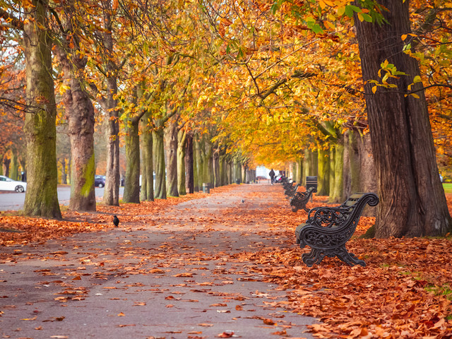 12 Excellent Things To Do In London In October 2020