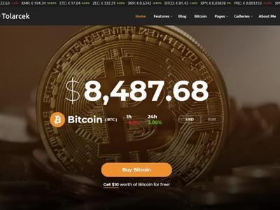 Tolarcek - A Bitcoin & CryptoCurrency WordPress Blog Theme (Personal)