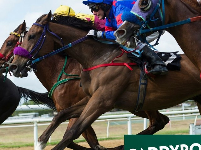 Horse racing betting tips: Why you should back this 8/1 shot - who could be a future Grand National winner